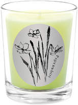 Qualitas Candles Paperwhite Scented Candle