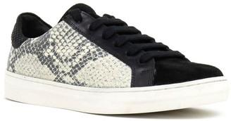 Crevo Cardi Snake Embossed Leather Sneaker