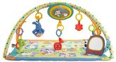 Fisher-Price Sing-Along Musical Friends Gym by