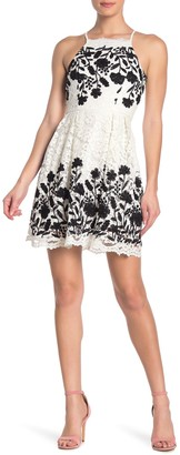 Jump Embroidered Floral Lace Dress
