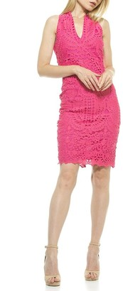 Alexia Admor Karyn Crochet Lace Sheath Dress