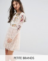 Frock and Frill Petite Frock And Frill Petite Premium Embroidered Lace Mini Prom Skater Dress