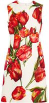 Dolce & Gabbana Floral-print Cotton-blend Matelassé Mini Dress - Red