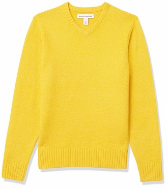 Amazon Essentials Men's Long-Sleeve Soft Touch V-Neck Sweater