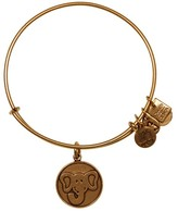 Alex and Ani The Elephant Charm Bangle | Friends of Jaclyn