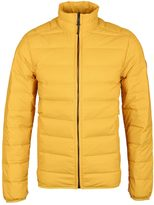 Timberland Bear Head Gold Goose Down Quilted Jacket