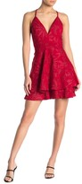Love, Nickie Lew Eyelash Lace Back Embroidered Skater Dress