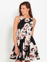 Dotti Polished Floral Skater Dress