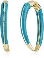 Noir Gold and Turquoise Color Indigo Earrings