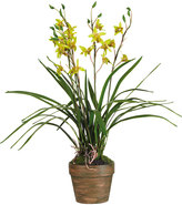 OKA Potted Faux Cymbidium Orchid, Yellow