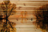 Parvez Taj ParvezTaj 'Glass Lake' by Painting Print on Natural Pine Wood