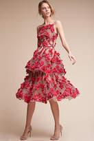 Anthropologie Cece Wedding Guest Dress