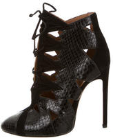 Alaia Python Lace-Up Booties w/ Tags