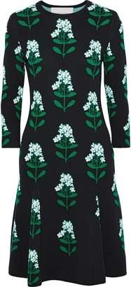 Carolina Herrera Floral-print Jacquard-knit Wool-blend Dress