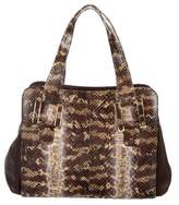 Kara Ross Python Willa Bag