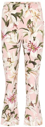 Dolce & Gabbana High-rise cropped strech-crepe pants