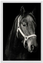 Pottery Barn Dark Horse Framed Print by Jennifer Meyers