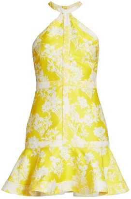 Alexis Solana Floral Halter Dress
