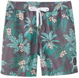 Tiger Joe Boys' Summer Jungle Boardshort (28) - 8148111