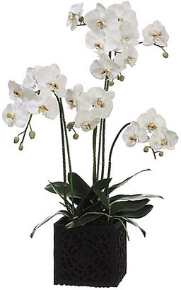 """One Kings Lane 37"""" Phalaenopsis Orchid with Square Planter - Faux - plant, white/green; vessel, black"""