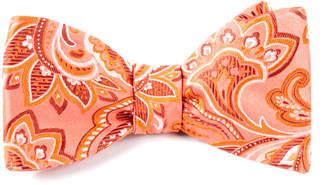 The Tie Bar Organic Paisley