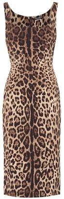 Dolce & Gabbana Leopard-print stretch-silk dress