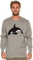 Barney Cools Killa Whale Kit Knit Sweater