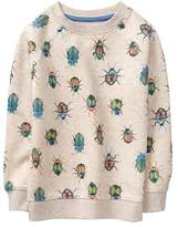 Gymboree Beetle Pullover