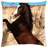"iRocket - Mustang Stallion Rearing - Throw Pillow Cover (20"" x 20"", 50cm x 50cm)"
