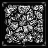 The Tropical Butterfly Pocket Square Black