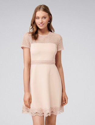 Forever New Darcey Lace Double Tier Ponte Dress - Pink - 14