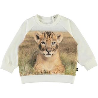 Molo Boy's Esco Lion Cub Graphic Sweatshirt, Size 6M-2