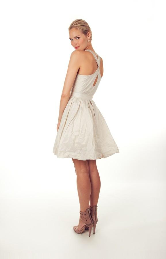 Nicole Miller Cora Cut the Cake Dress