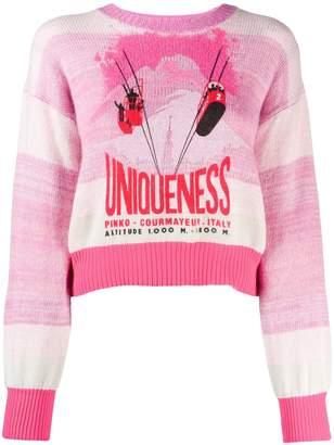 Pinko Courmayeur sweater