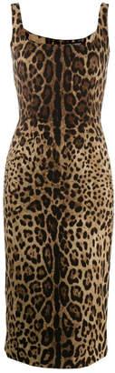 Dolce & Gabbana Sheath Dress With Leopard Print