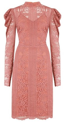 Dorothy Perkins Womens Little Mistress Coral Lace High Neck Dress, Coral