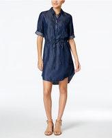 Lee Platinum Denim Shirtdress