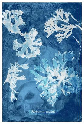 Jonathan Bass Studio Natural Forms Blue 1, Decorative Framed Hand Embel