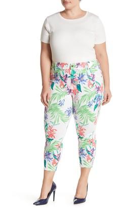 Hue Tropical Orchid Essential Print Pants (Plus Size)