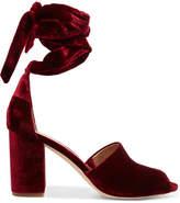 Sam Edelman - Odele Velvet Sandals - Burgundy
