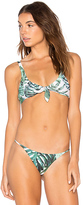 Stone Fox Swim Hana Bikini Top in Green. - size L (also in )