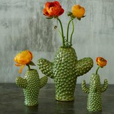 Graham and Green Cactus Vases