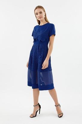 Coast Lace & Stripe Full Midi Dress