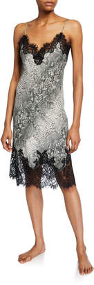 Gold Hawk Animal-Print Lace-Trim Slip
