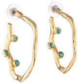 Kara Ross Hoop Earrings