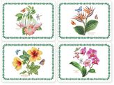 Pimpernel Exotic Botanic Garden Placemats (Set of 4)