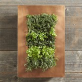 Williams-Sonoma Copper Vertical Wall Planter