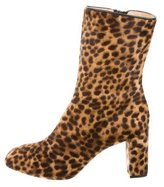 Eugenia Kim Frankie Leopard Ankle Boots