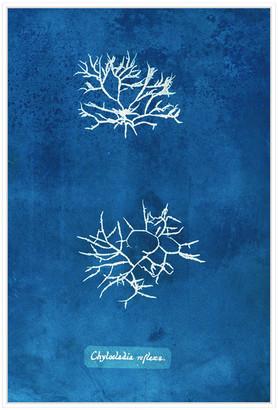 Jonathan Bass Studio Natural Forms Blue 7, Decorative Framed Hand Embel