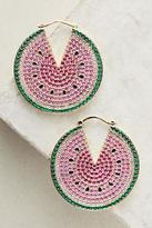 Noir Watermelon Hoop Earrings